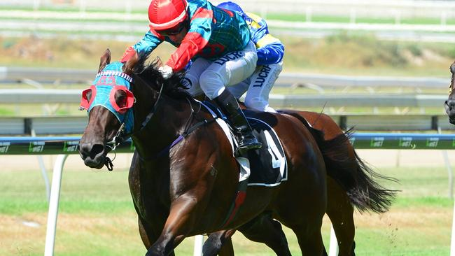 Lazy daze: Ahndras, ridden by Jeff Lloyd, wins at Doomben on Saturday over 1630m. Picture: Grant Peters, Trackside Photography
