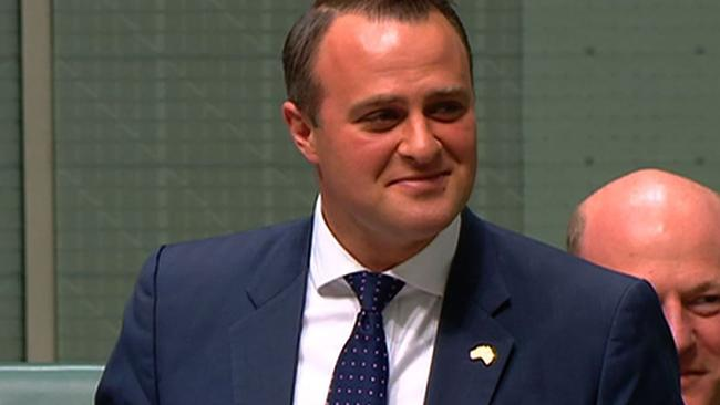 Liberal MP Tim Wilson proposing to his partner Ryan Bolger (not pictured) in Parliament. Picture: AFP PHOTO / Australian Parliament via Seven News.
