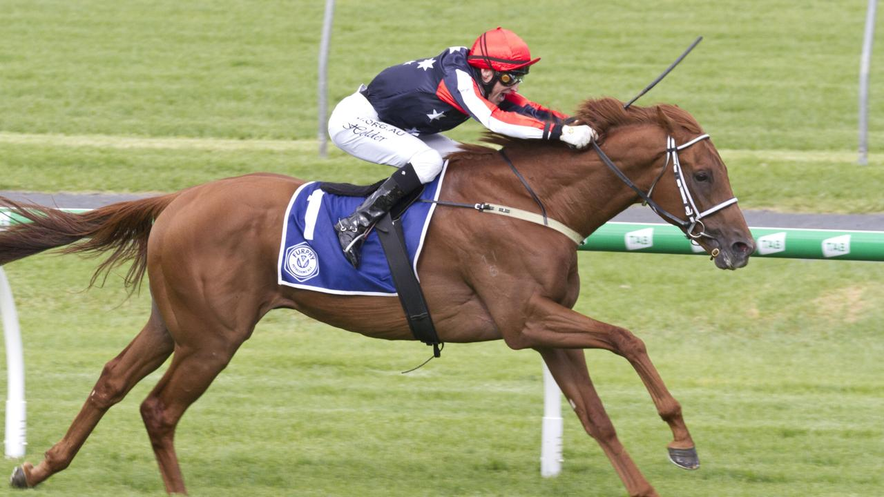 Dalasan was involved in a scary incident at Morphettville last weekend. Picture: Atkins Photography