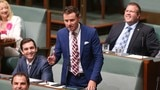 Liberal MP Andrew Laming to 'own mistakes' but remain in Coalition party room