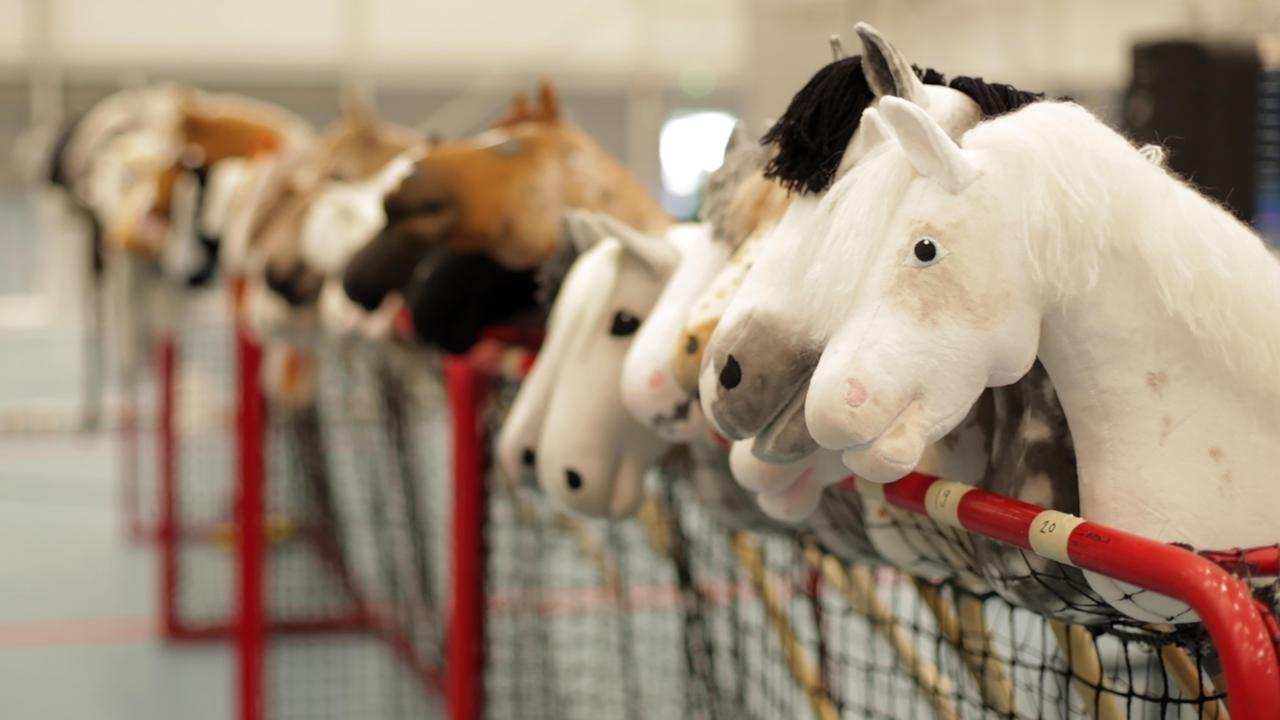 Dozens of hobby horses lined up ready to be ridden during the 8th Hobby Horse championships in Seinajoki, Finland on June 15. Picture: AP