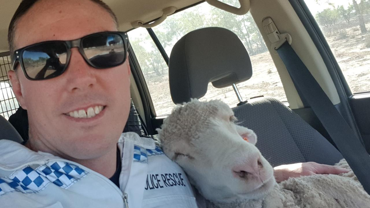 The officer took a selfie with his new friend before dropping her off a holding pen. Picture: NSW Police Force