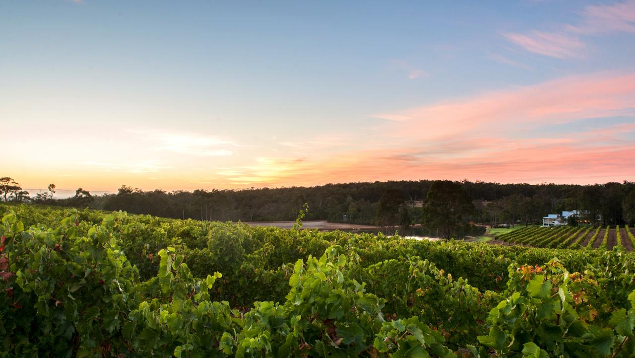 Magical views from Aravina Estate, Margaret River. Picture: Supplied