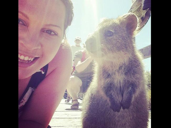 """Omg in love with the world famous #quokka had to attempt the #quokkaselfie haha. @Rottnest #Rottnest you are a dream!"" Picture:lilmissash64/Instagram"