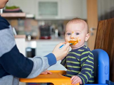 Baby food makers to blitz up delicious purees at home