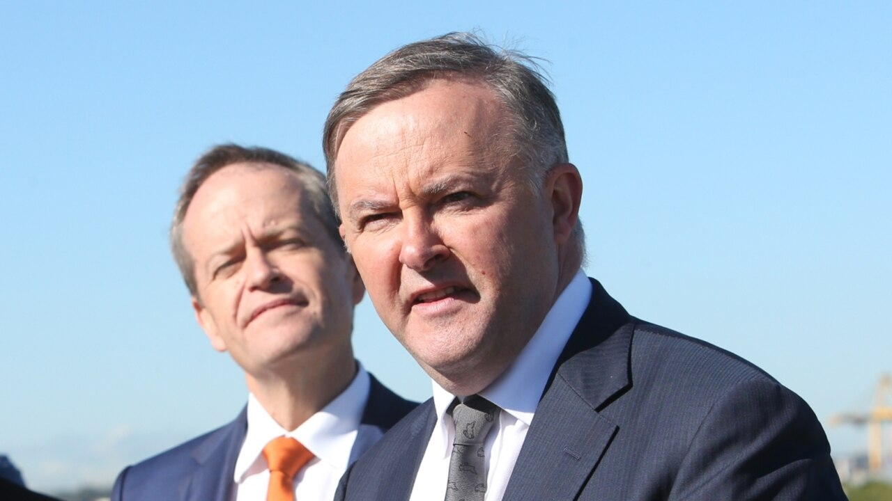 Labor would win two clutch by-election seats if Albanese were leader: poll