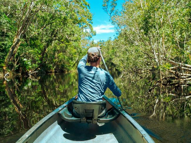 14. PADDLE WITH YOUR THOUGHTS Hire a kayak for a self-guided slow adventure through the tannin-stained 'river of mirrors' in the Noosa Everglades – a pristine pocket of the protected Noosa Biosphere, teeming with birdlife and water lilies.