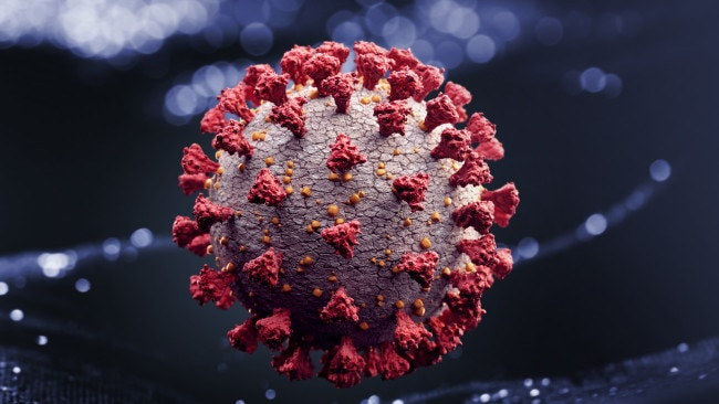The Delta variant has been deemed a 'fitter virus' as it grips harder to a person's cell once they become infected with this particular strain of COVID-19. Picture: Getty Images