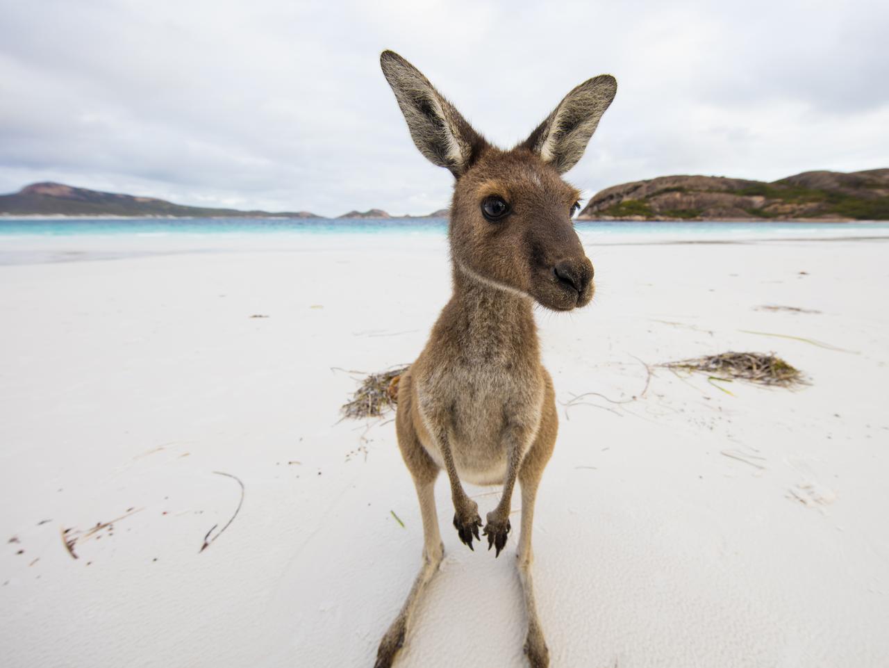 Picture: Tourism Australia