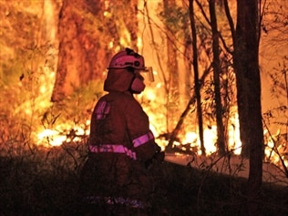 WA's premier wants to see more controlled burns to curb the risk of out-of-control bushfires.