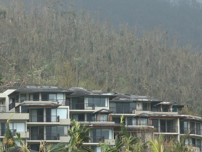 Trees were stripped bare at Airlie Beach. Picture: Liam Kidston