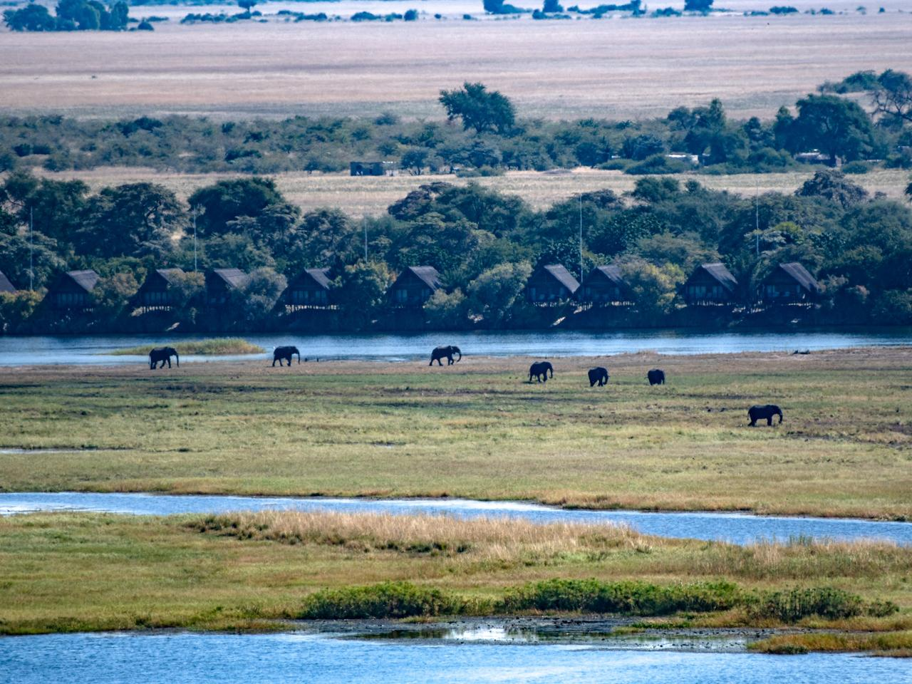 Supplied Travel Escape only Chobe River Botswana Neale Maynard