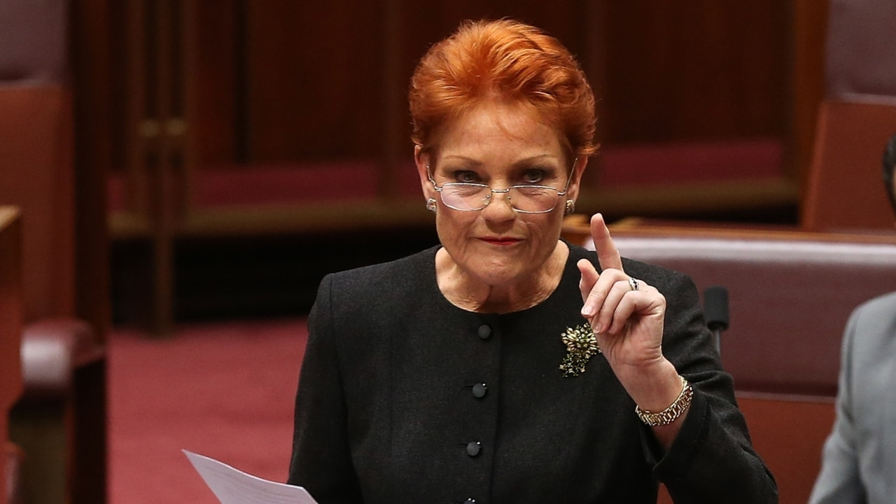 Pressure mounts to have Pauline Hanson thrown off Family Law Inquiry