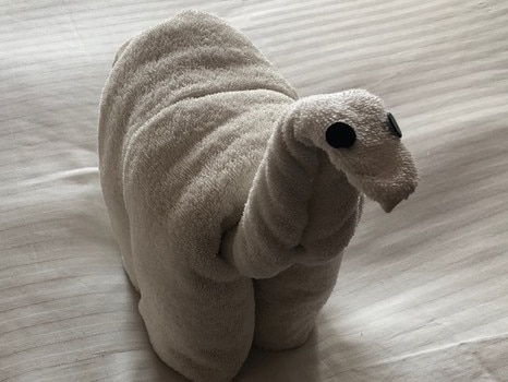 2. KOMODO DRAGON After returning from a daylong shore excursion to Indonesia's world heritage Komodo Island to see the remarkable two-metre long, 140kg dragons up close, it was fun to be greeted by this tiny towel version.