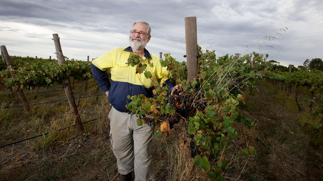 Vineyards and Climate Change