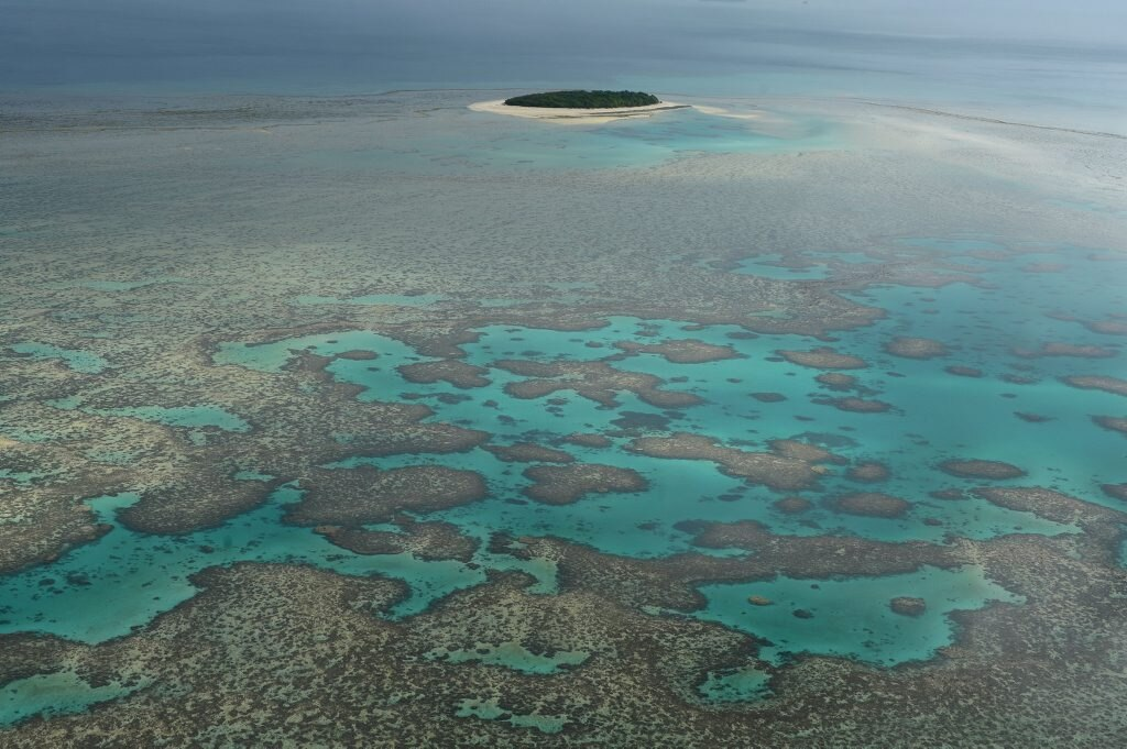 Great Barrier Reef and Bushy Atoll. . Picture: Lee Constable