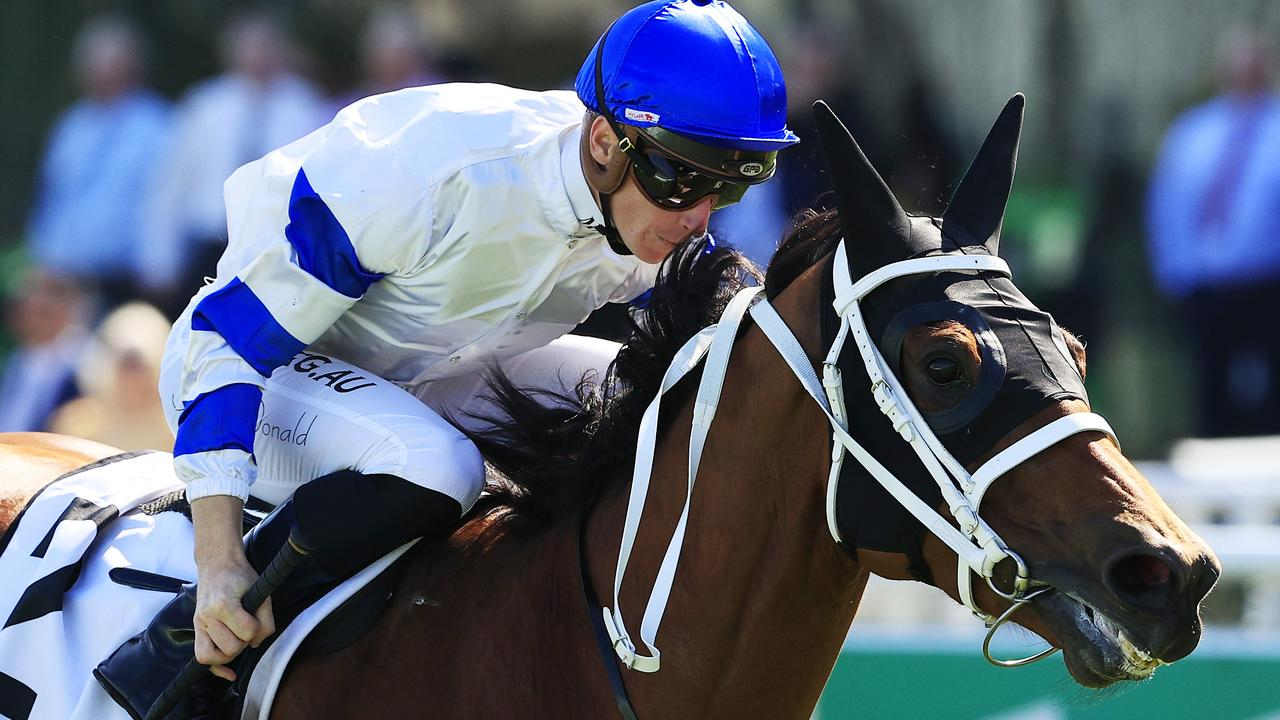 Kolding has been nominated for the Group 2 Missile Stakes. Photo: Mark Evans/Getty Images