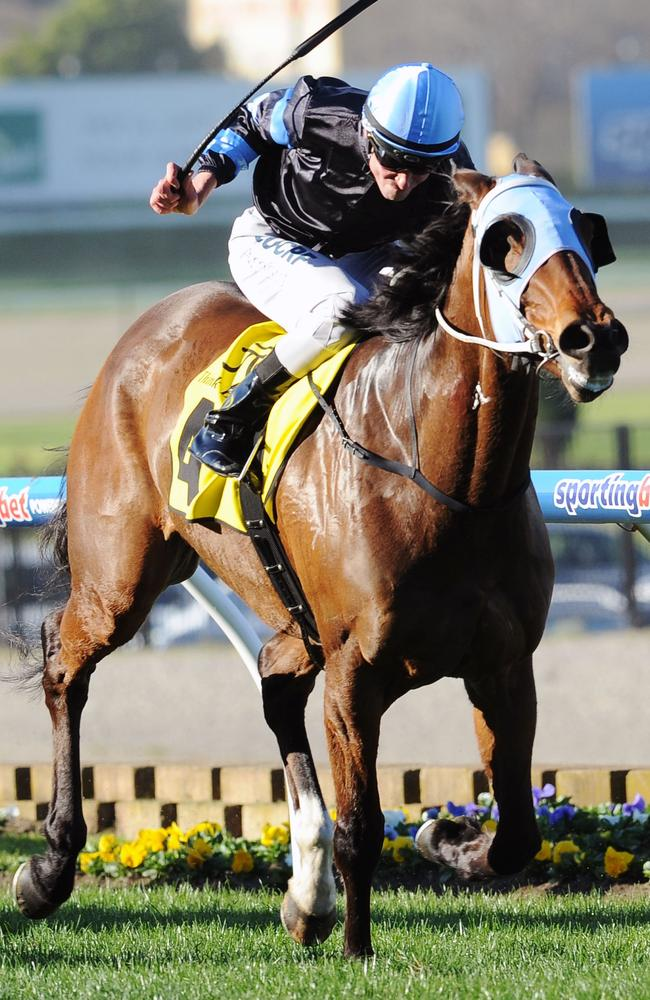 Steven Arnold riding The Cleaner to victory in the Dato Tan Chin Nam Stakes. Picture: Getty Images