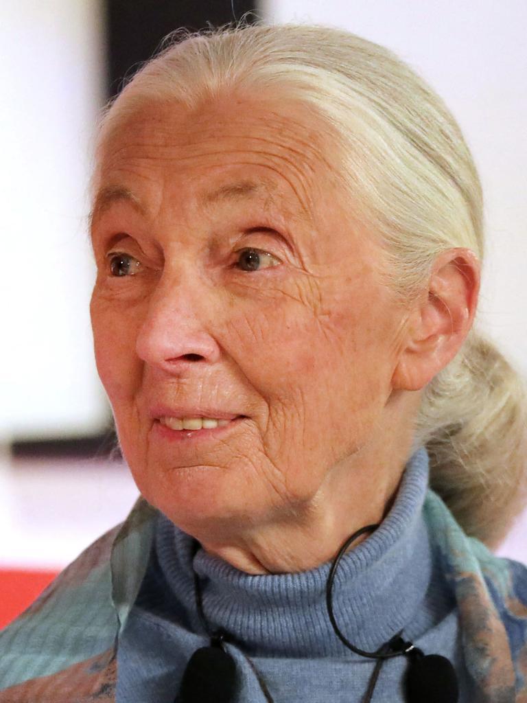 Primatologist Jane Goodall. Picture: Spencer Platt/Getty Images/AFP