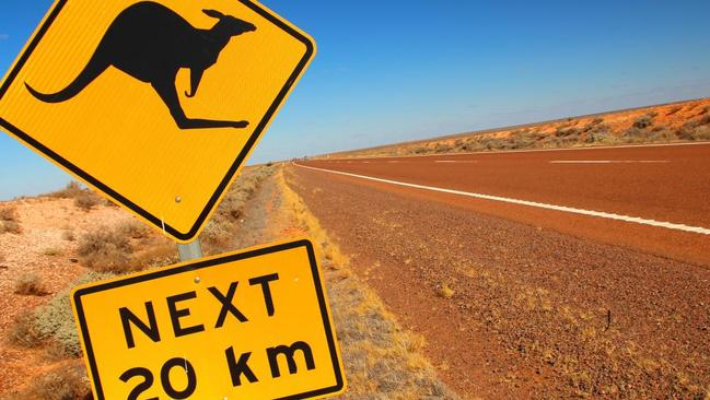 A British MP has raised the problem of driverless car technology and kangaroos during a speech in parliament.