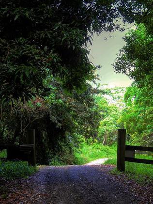 Djanbung Permaculture Gardens in Nimbin.