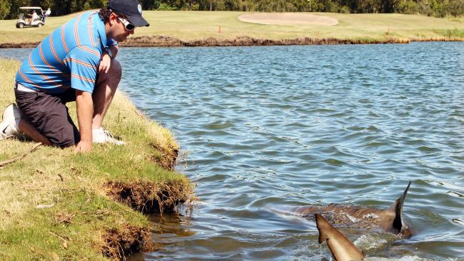The legend: Bull sharks on the golf course The location: Carbrook, Queensland The story: Back in the late 1990s, heavy floods hit the area and the 21 hectare, 14 metre deep lagoon beside the course came to house up to half a dozen of these ferocious creatures. At the Carbrook Golf Club, they subside mainly on birdies, eagles and even the rare albatross. See also:Weird Aussie spots you might not know 10 weird, wacky and fun festivals in Australia