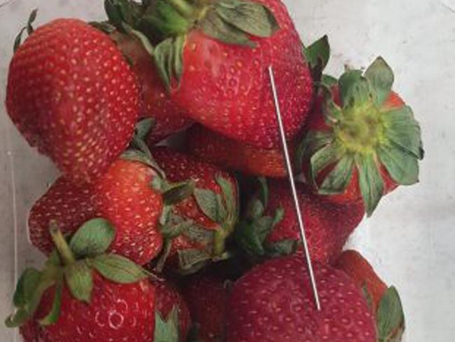 A needle found in a punnet of strawberries in Queensland. There have now been four confirmed cases in NSW. Picture: AAP Image/QLD Police