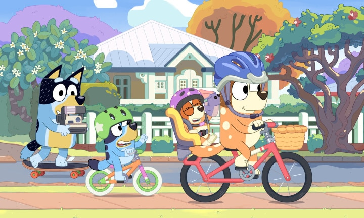 Determined to show Bob a good time, Dad, Mum, Bluey and Bingo set off on their bikes.