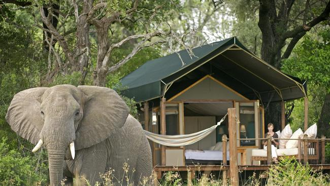 STANLEY'S CAMP, OKAVANGO DELTA, BOTSWANA: Furnished with African antiques, the tent interiors are beautiful. But the real attraction at Stanley's Camp is what's outside — like one of the resident elephants. As part of a rescue program, guests have the opportunity to interact with two elephants based at the camp. Set on 100,000ha in the Okavanga Delta, the site is a base for game viewing excursions — or you could just relax in the camp swimming pool and watch giraffe march across the savanna.