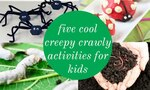 creepy crawly insect activities