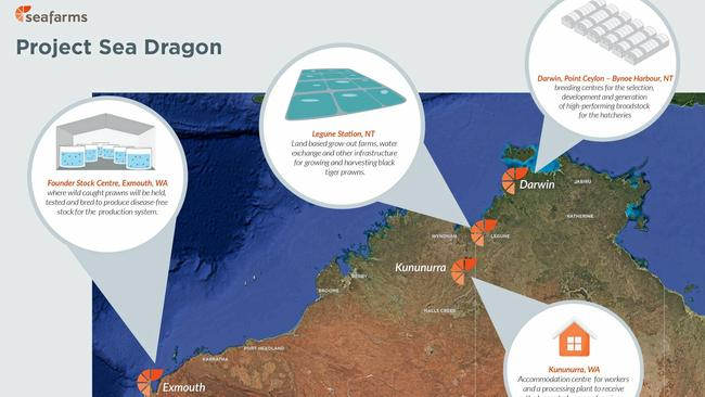 Project Sea Dragon given wings | The Weekly Times