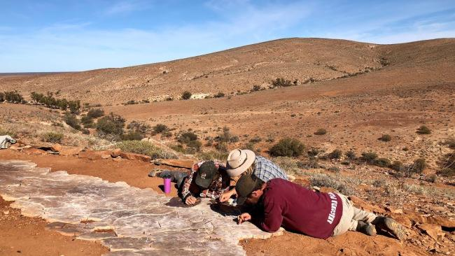 Archaeologists at work. Picture: Sarah Nicholson