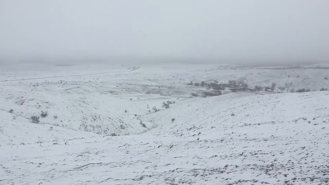Record Low Temperatures Bring Rare Snow to Rural South Australia