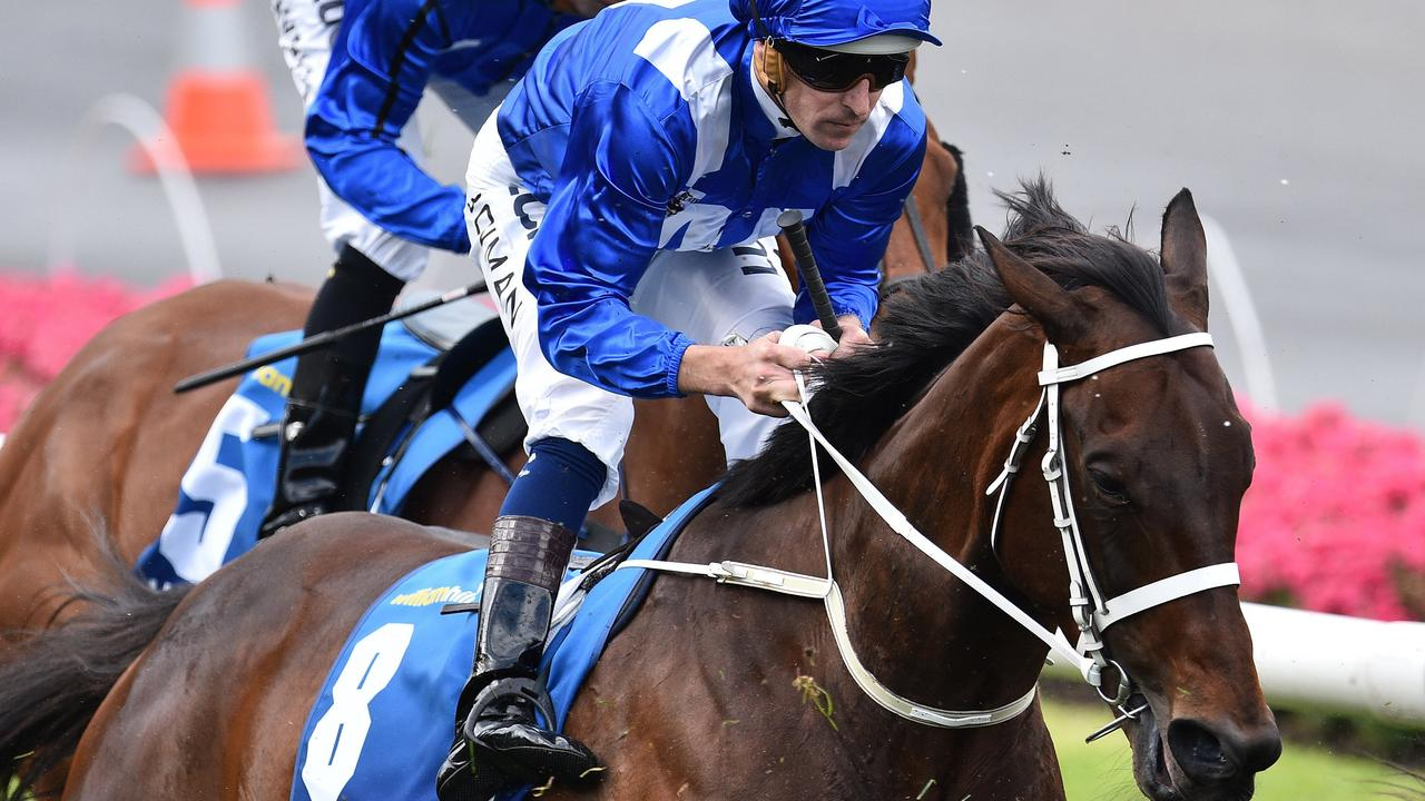Four-time Cox Plate champion Winx is the nation's top prizemoney earner.