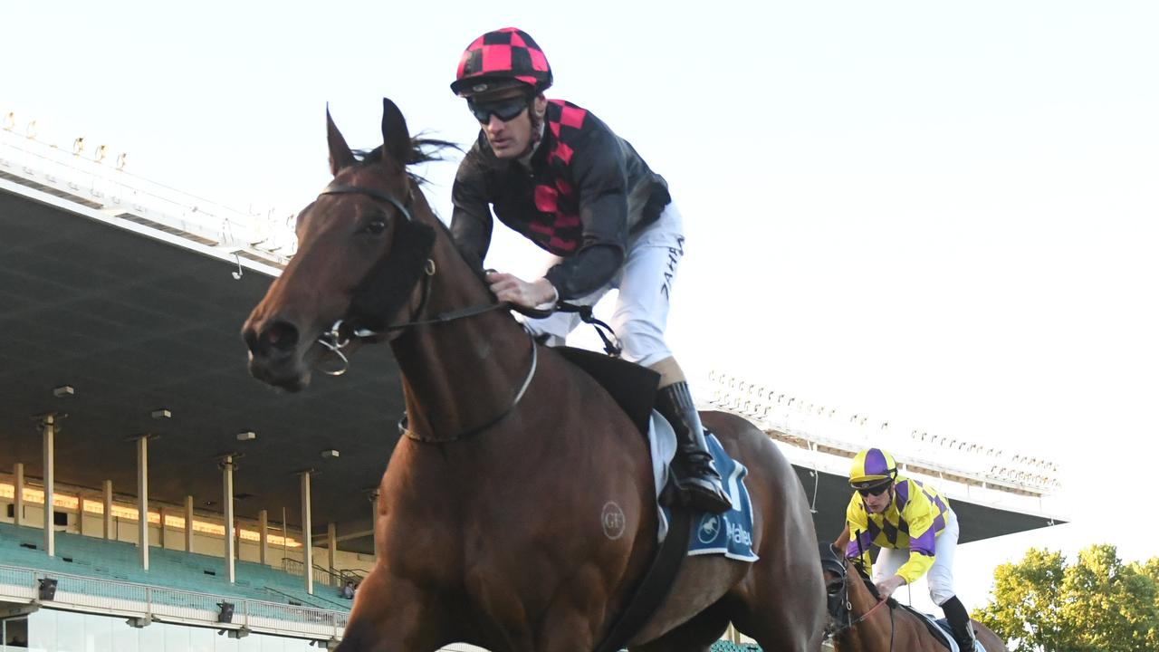 Group-placed mare Malicorne is set to make a winning return to the races at The Valley on Saturday. Picture: Racing Photos via Getty Images