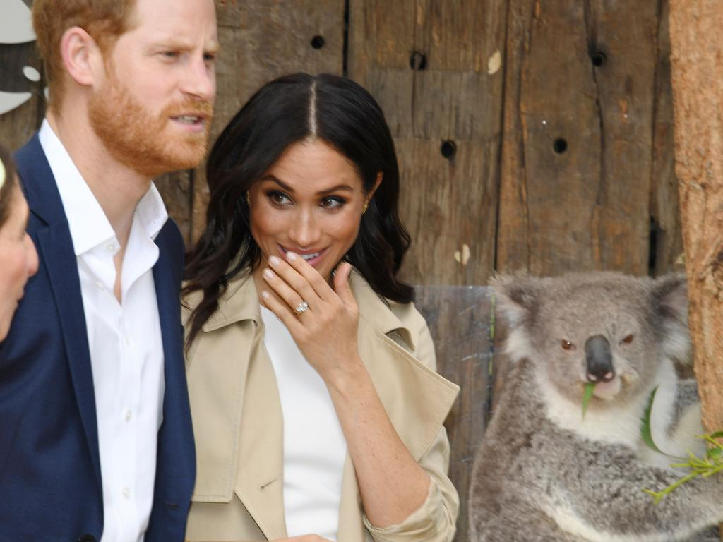 Harry gave the creature a little pat, but Meghan carefully abstained. Picture: Dean Lewins/ AFP