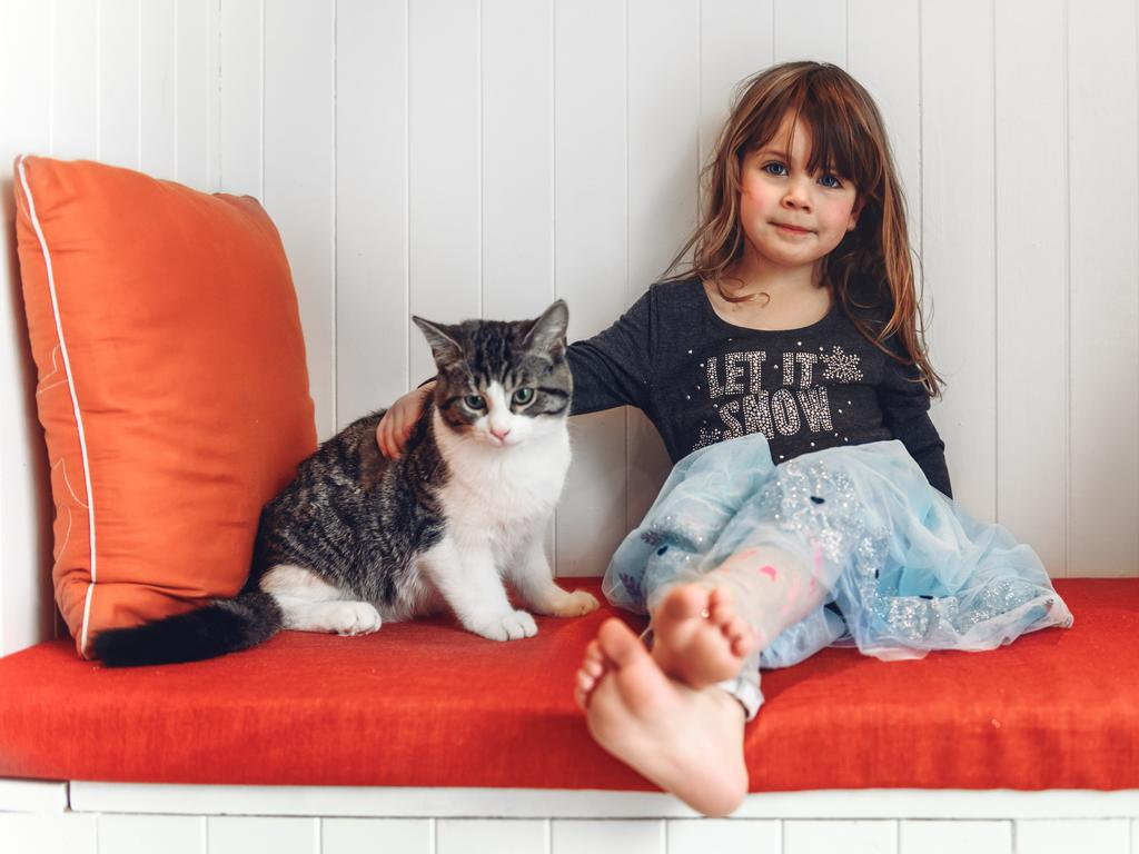With the right personality, cats can be great for kids.