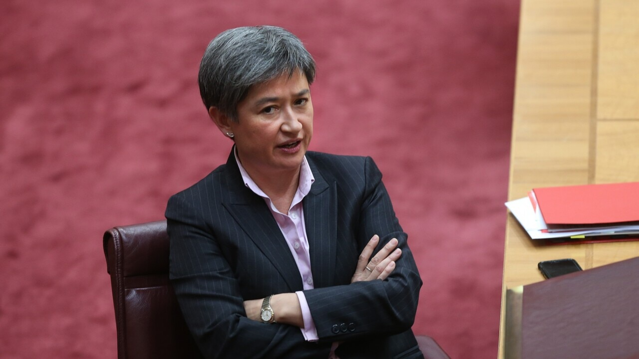 Penny Wong deserves credit for 'condemning' QLD Labor's pro-Palestine motion