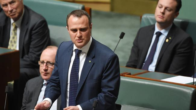 Liberal Member for Goldstein Tim Wilson makes his maiden speech in the House of Representatives at Parliament House in Canberra. Picture: Mick Tsikas/AAP