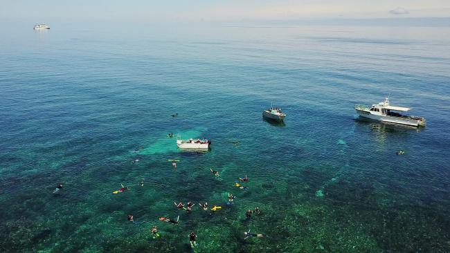 These are from the drone a bit higher up showing all our boats as we snorkel the wreck site. Picture: Supplied