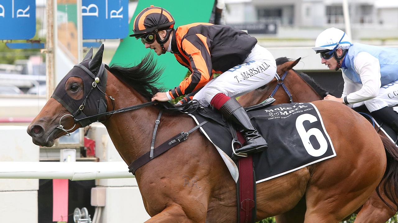Four-year-old mare Oh Five Glory is likely to be heading to the breeding barn after Saturday. Picture: AAP