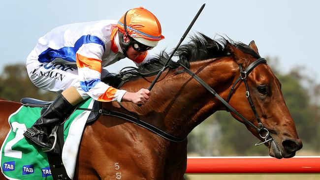 TAB Werribee Cup at Werribee racecourse- (R) Luke Nolan onboard Pelicano wins , Melbourne - December 15th, Picture by Colleen Petch.