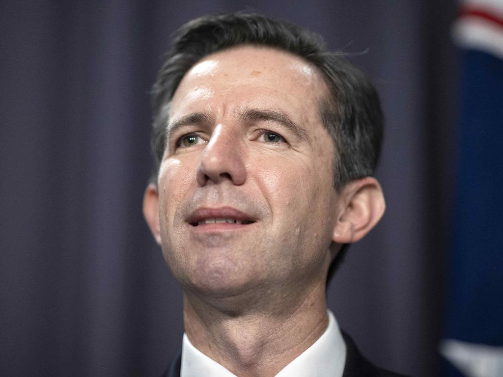Simon Birmingham says diplomats are 'rolling up their sleeves' to find 'new homes' for Australian goods. Picture: NCA NewsWire / Gary Ramage