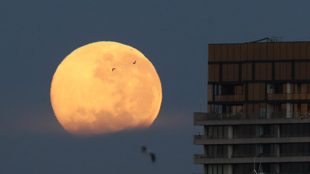 A full moon over the Yarra river on Wednesday morning. Picture: David Crosling