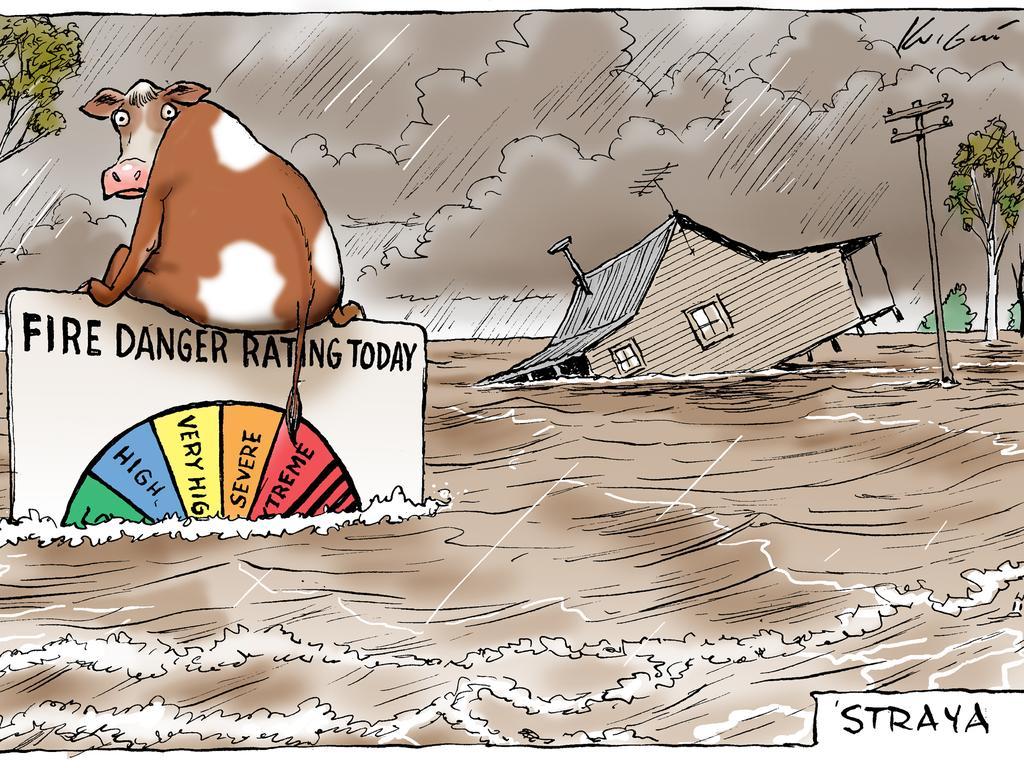Mark Knight's flood cartoon. Picture: Mark Knight