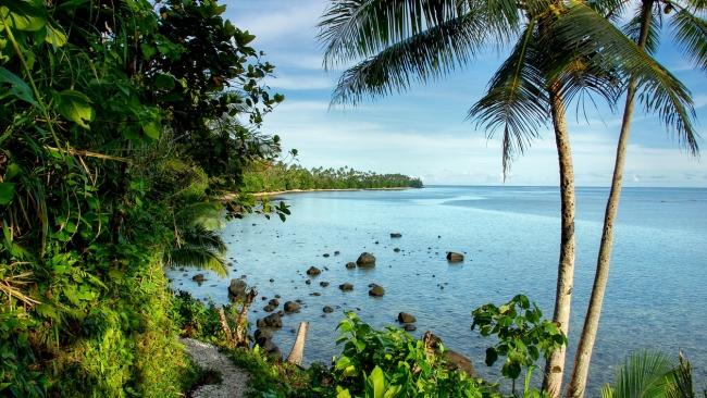 8/8 For adventurers: Savusavu, Vanua Levu and Taveuni Island Though the country'ssecond-largest island,Vanua Levu is also one of its least well-known. Used as the location for several recent seasons of Australian Survivor (specifically the area of Savusavu), it's part of a group of isles surrounded by incredible reefs and gorgeous aqua blue water. Make like the contestants on the gruelling gameshow and visit it to get away from it all and get in amongst nature. Another adventurer pick? Taveuni Island. Called 'garden island', it offers dense, lush jungle, natural rockslides, picturesque waterfalls, rivers, creeks, and canyons, as well as numerous opportunities to swim, climb, and hike. For more info on Fiji's regions, visit Tourism Fiji
