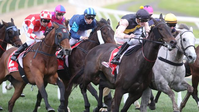 Thoroughbred action in Victoria heads to Donald on Monday afternoon. Picture: David Crosling