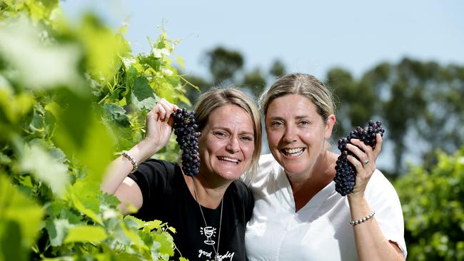 Winemaker Rebecca Willson, right, and sister Lucy, owners of Bremerton Wines at Langhorne Creek.  Picture: Dylan Coker