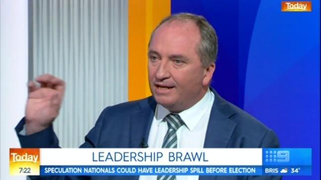 Barnaby Joyce on leadership speculation (9 News)