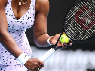 Serena Williams koala art. Image: Getty